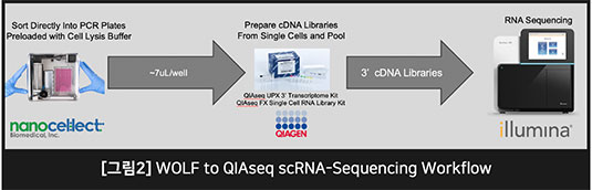 그림 2 WOLF to QIAseq scRNA-Sequencing Workflow
